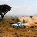 WRC: vadállatok társaságában – Toyota hírek